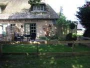 Vakantiehuisje met hond Drenthe